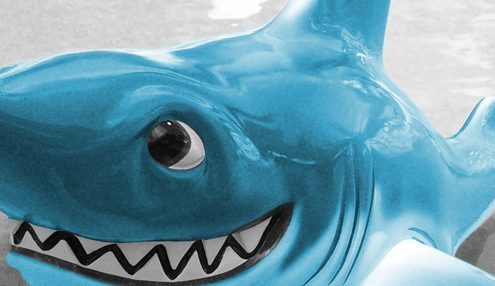 sales funnel is like a shark